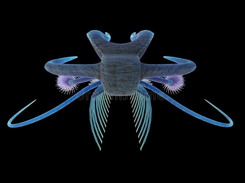 Uma criatura marinha pré-histórica - marella ilustração do vetor