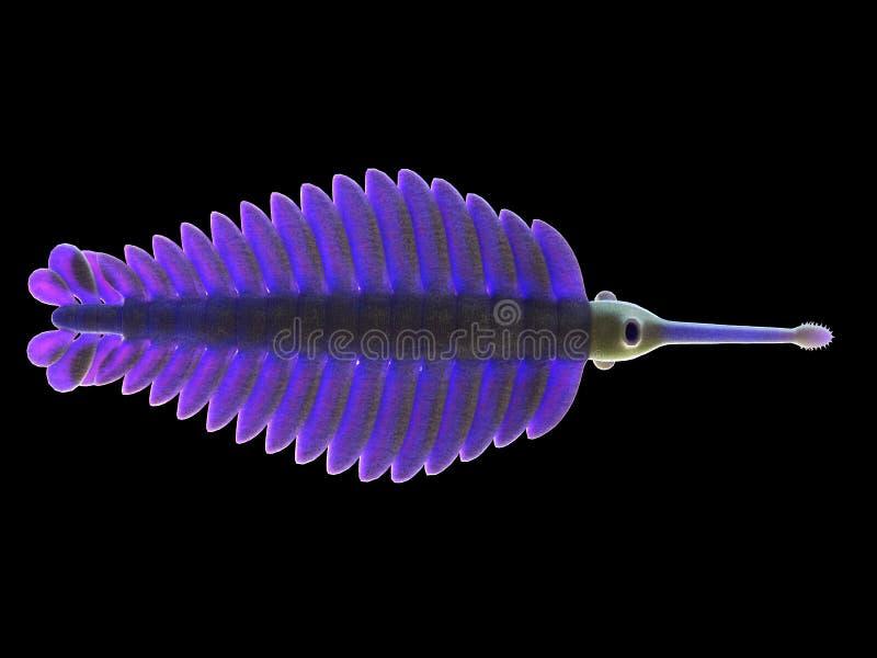 Uma criatura marinha pré-histórica - opabinia ilustração do vetor