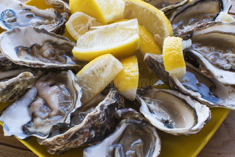 Uma dúzia de ostras e um limão numa placa de plástico que se come ao ar livre perto do mar imagem de stock