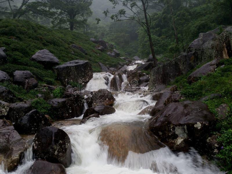 Uma das cascatas bonitas em Sri Lanka imagens de stock royalty free