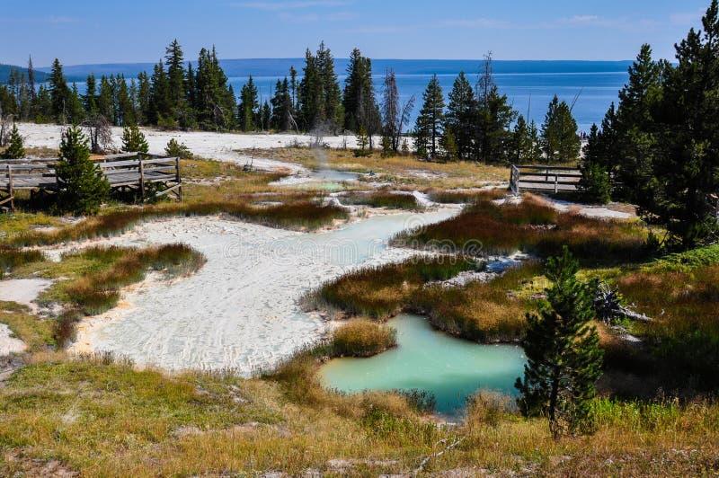 Uma de muitas paisagens cênicos do parque nacional de Yellowstone, imagens de stock royalty free