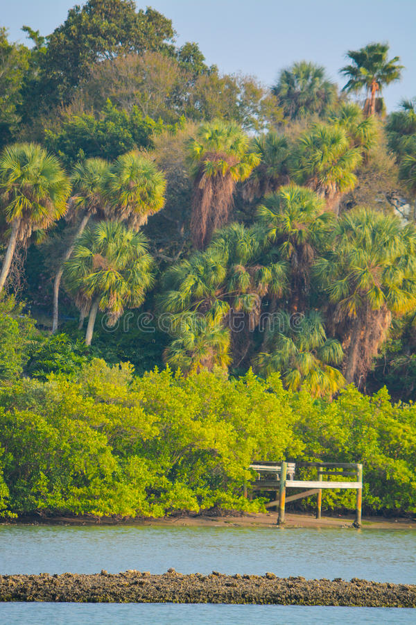 Uma doca na maré baixa em uma via navegável litoral interna de Florida fotografia de stock