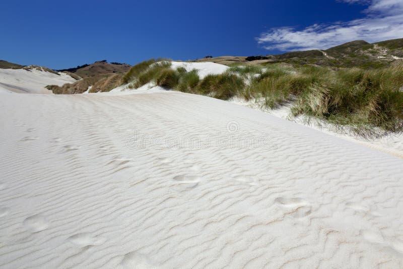 Uma duna de areia na baía do Sandfly foto de stock royalty free