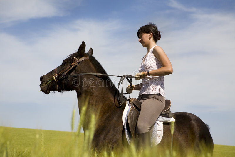 Uma equitação fêmea em um cavalo preto foto de stock royalty free