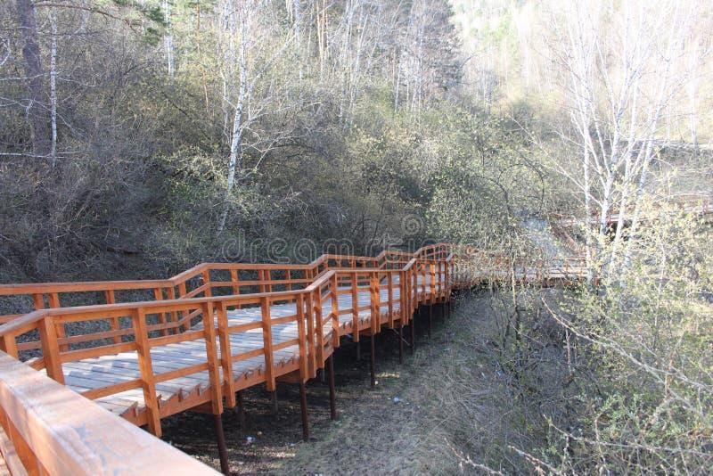 Uma escada longa de madeira alaranjada com um corrimão com um apoio do metal entre vidoeiros verdes na reserva nacional stolby de fotos de stock