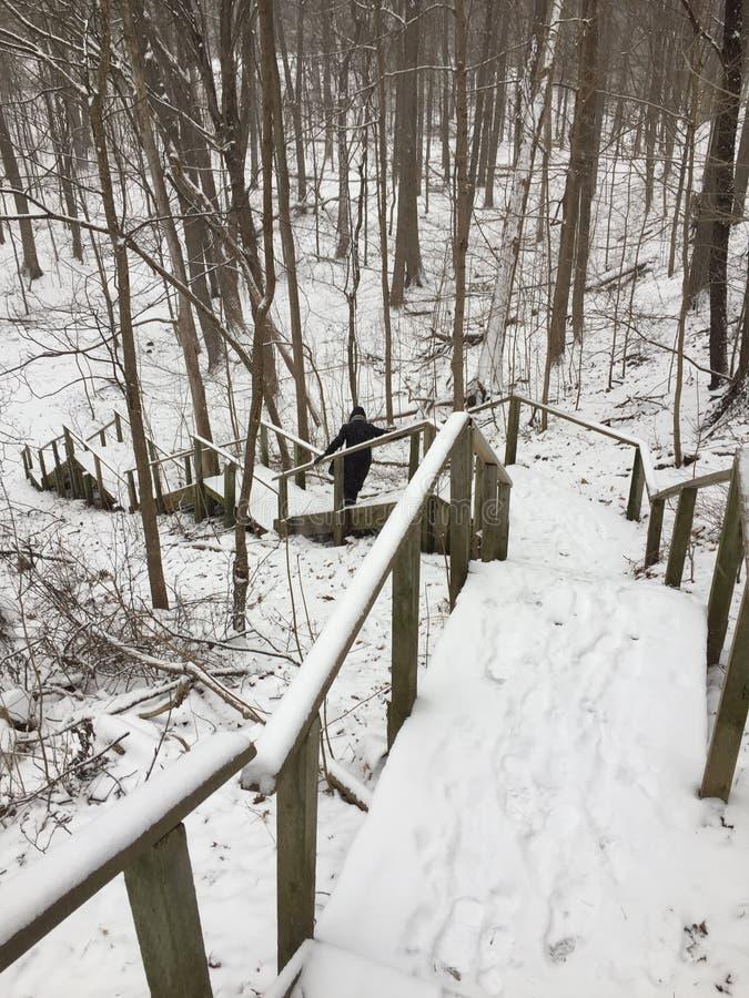 Uma escadaria para baixo ao país das maravilhas do inverno Toronto, Ont?rio, Canad? imagem de stock