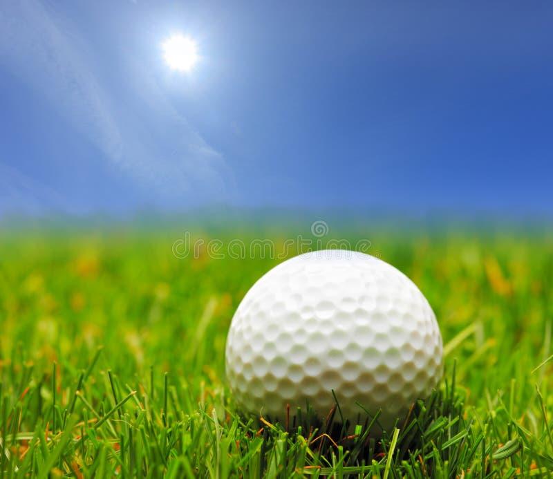 Uma esfera de golfe em uma grama verde fotografia de stock