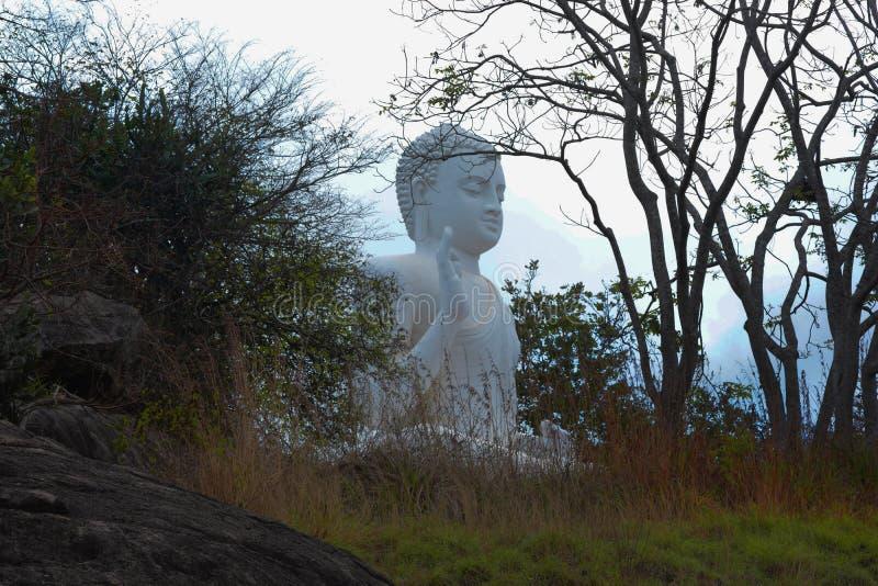 Uma estátua das Budas em Mihinthalaya foto de stock royalty free