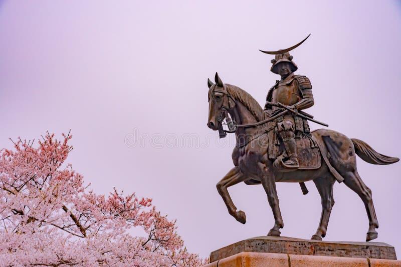 Uma estátua de Masamune Date a cavalo que inscreve Sendai Castle na flor de cerejeira da flor completa, parque de Aobayama, Senda foto de stock