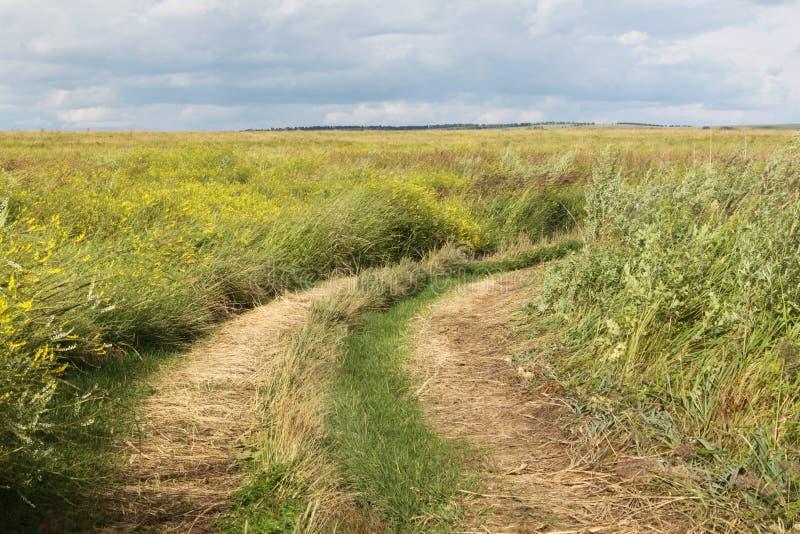 Uma estrada à terra em um campo com grama alta na área de Krasnoyarsk em Rússia imagens de stock royalty free