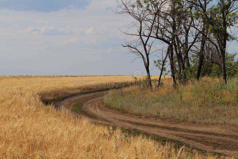 Uma estrada ao longo do campo imagens de stock royalty free