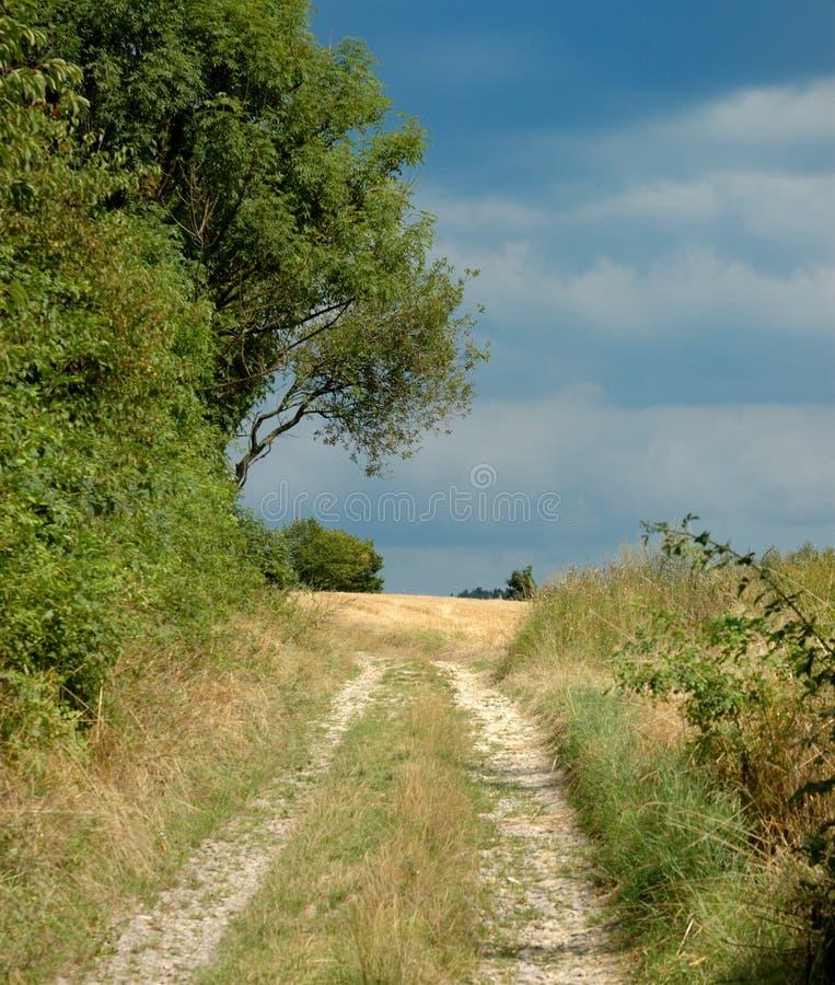 Uma estrada através dos campos fotos de stock royalty free