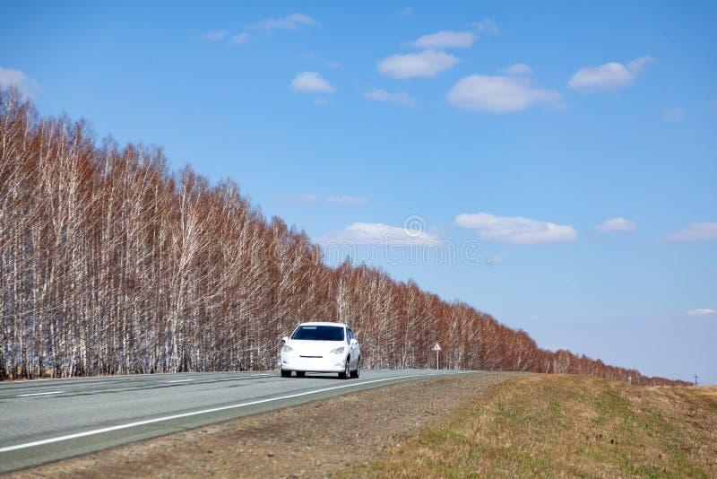 Uma estrada cinzenta do asfalto novo do enrolamento com uma tira divisora branca entre a floresta e o campo cobertos com a grama  imagens de stock