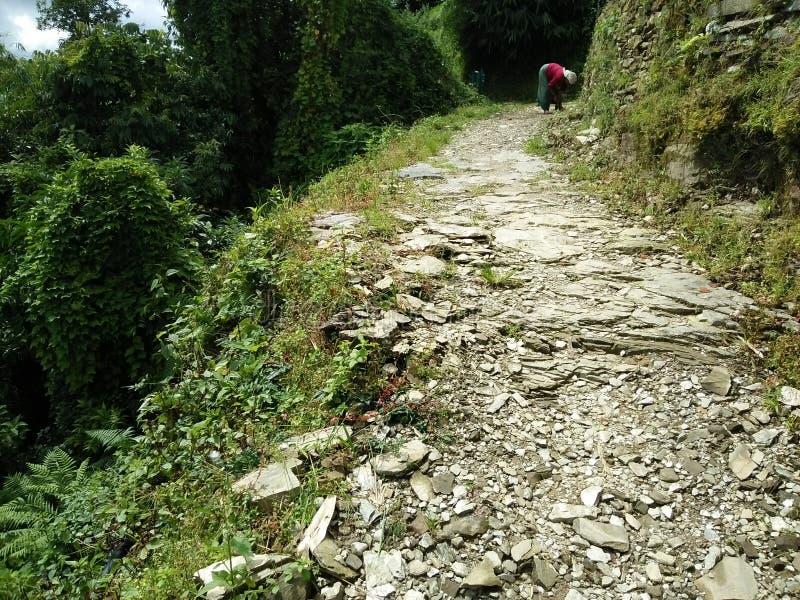Uma estrada completamente da aventura! imagem de stock royalty free