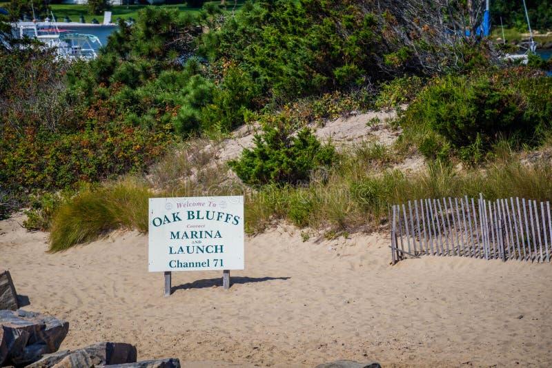 Uma estrada da entrada que vai a uma municipalidade em Cape Cod, Massachusetts imagem de stock royalty free