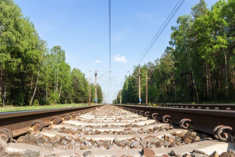 Uma estrada de ferro na floresta verde no dia ensolarado foto de stock