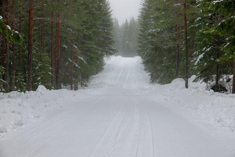 Uma estrada nevado, nevoenta na floresta imagens de stock royalty free