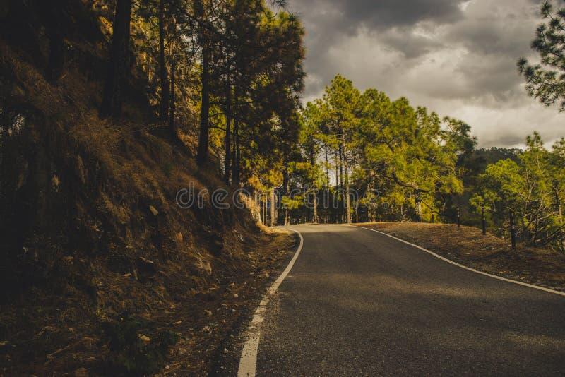Uma estrada que conduz a em algum lugar imagem de stock