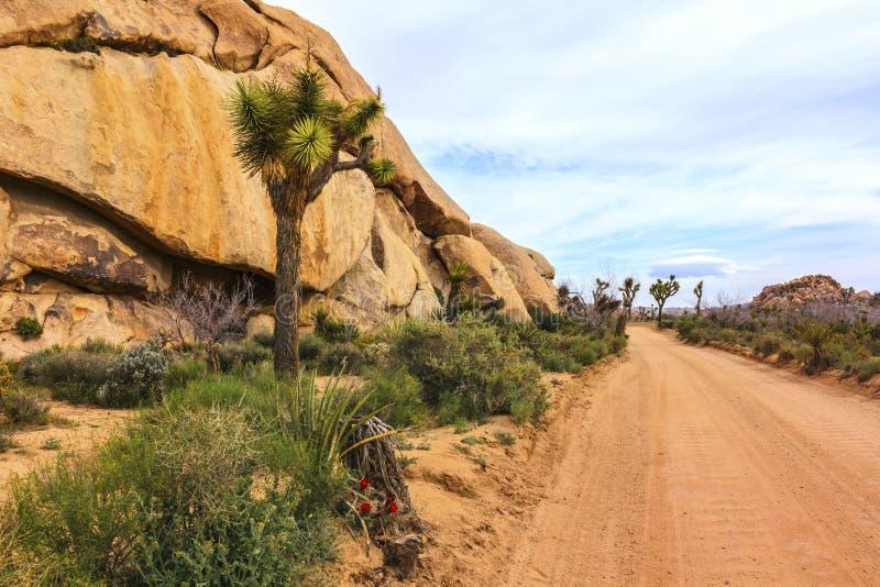 Uma estrada só na paisagem de Joshua Tree Desert, Califórnia da areia, Estados Unidos foto de stock