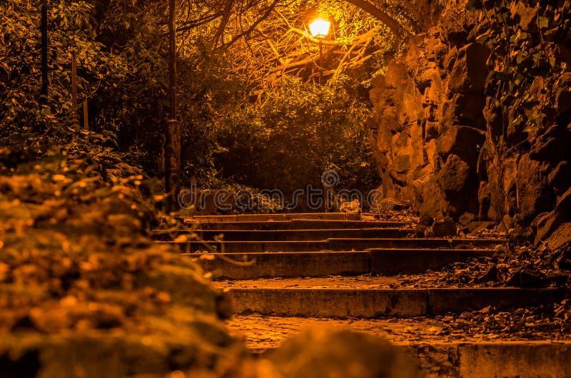 Uma estrada terrível com as escadas nas pedras de pavimentação do parque da noite pavimentadas com a balaustrada de pedra nas árv fotografia de stock