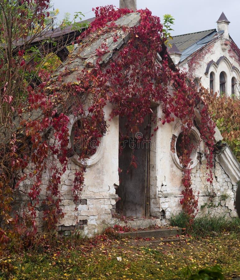 Uma estufa abandonada velha em um parque do outono, palácio de Konig, Ucrânia fotografia de stock royalty free