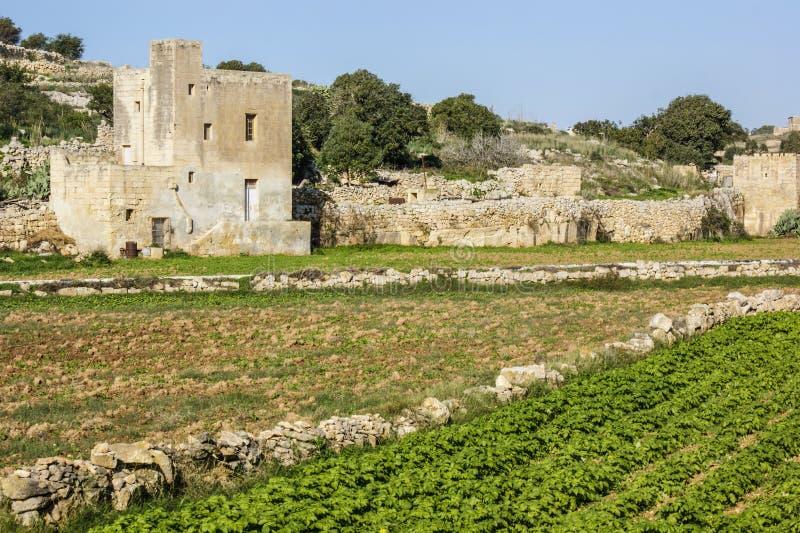 Uma exploração agrícola maltesa em Birzebbugia imagem de stock royalty free