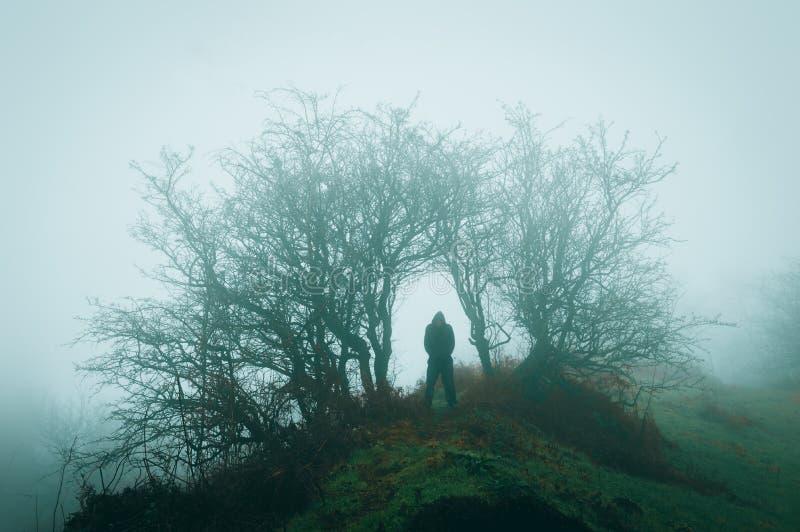 Uma figura encapuçado solitária mostrada em silhueta abaixo das árvores em um dia de invernos nevoento assustador imagem de stock