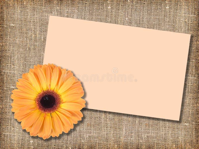 Uma flor alaranjada com mensagem-cartão fotos de stock royalty free