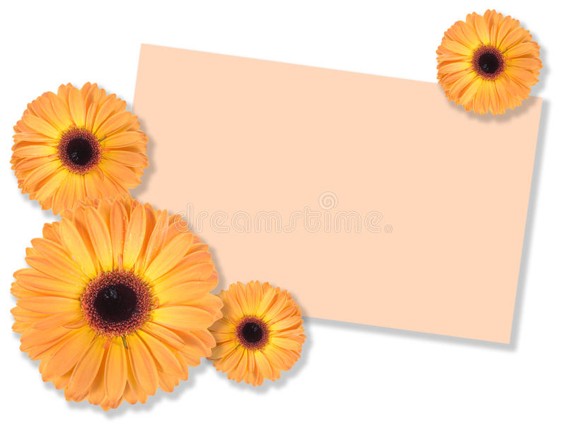 Uma flor alaranjada com mensagem-cartão imagem de stock