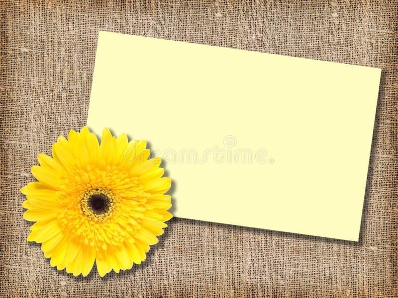 Uma flor amarela com mensagem-cartão fotos de stock