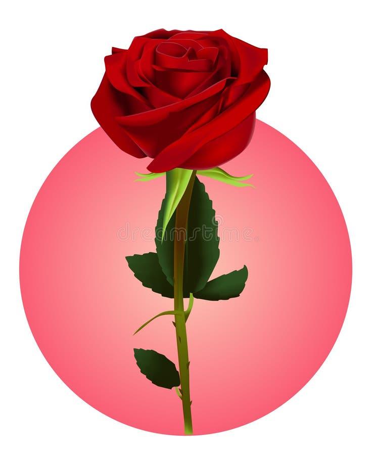 Uma flor de Rosa (malha) ilustração do vetor