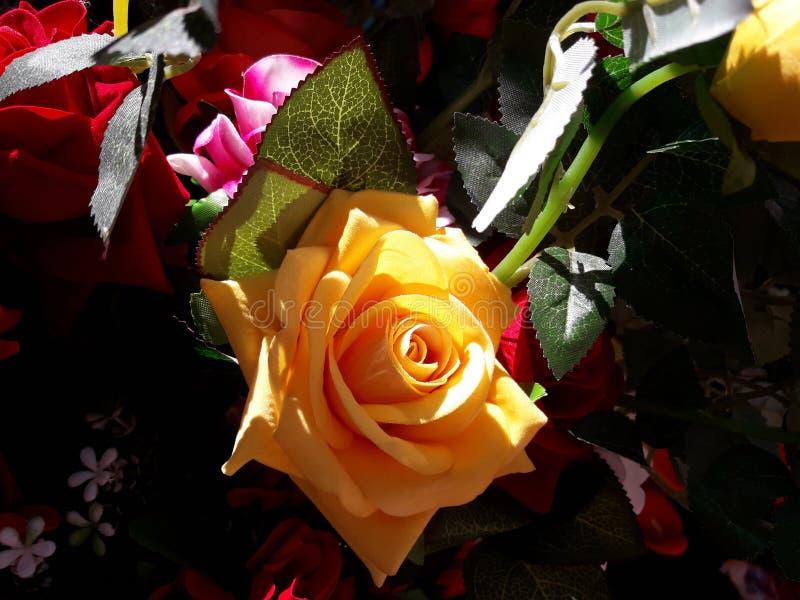 Uma flor plástica amarela de Rosa da cor do friver da vista bonita no mercado imagens de stock royalty free