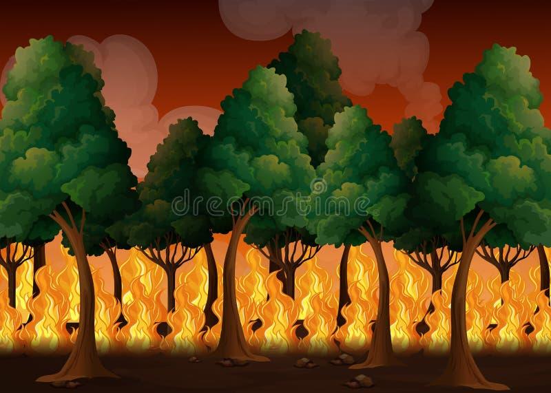 Uma floresta com desastre do incêndio violento ilustração do vetor
