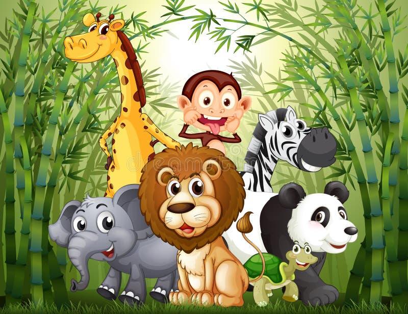 Uma floresta de bambu com muitos animais ilustração do vetor