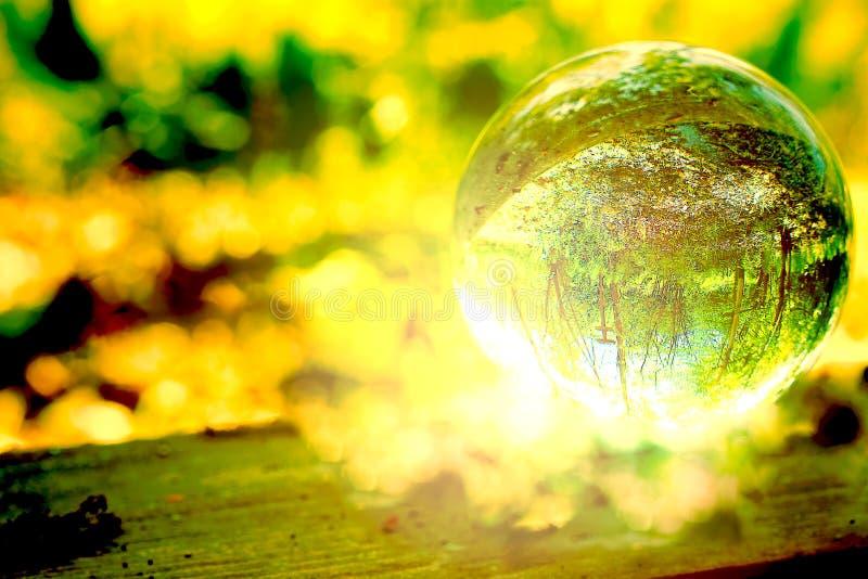 Uma floresta mágica em uma bola de vidro fotos de stock