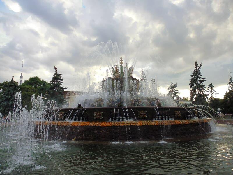 Uma fonte de trabalho no parque VDNKH imagem de stock