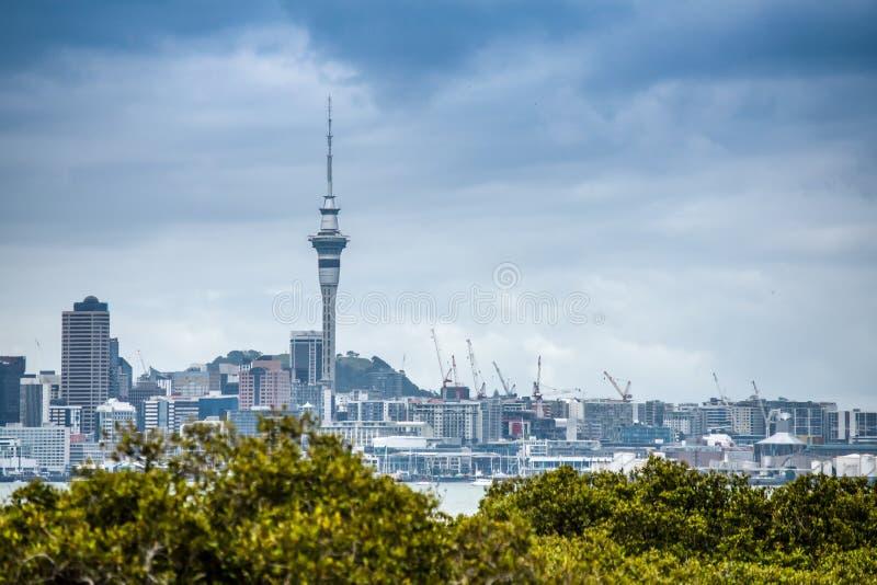 Uma foto bonita da cidade de Auckland com lotes dos guindastes que constroem prédios de apartamentos imagens de stock royalty free