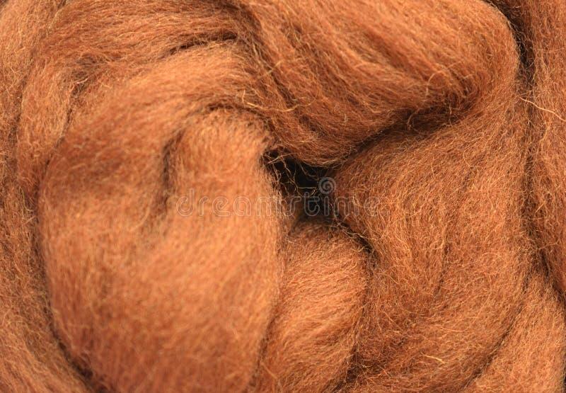 Uma foto de um close-up das lãs fotografia de stock