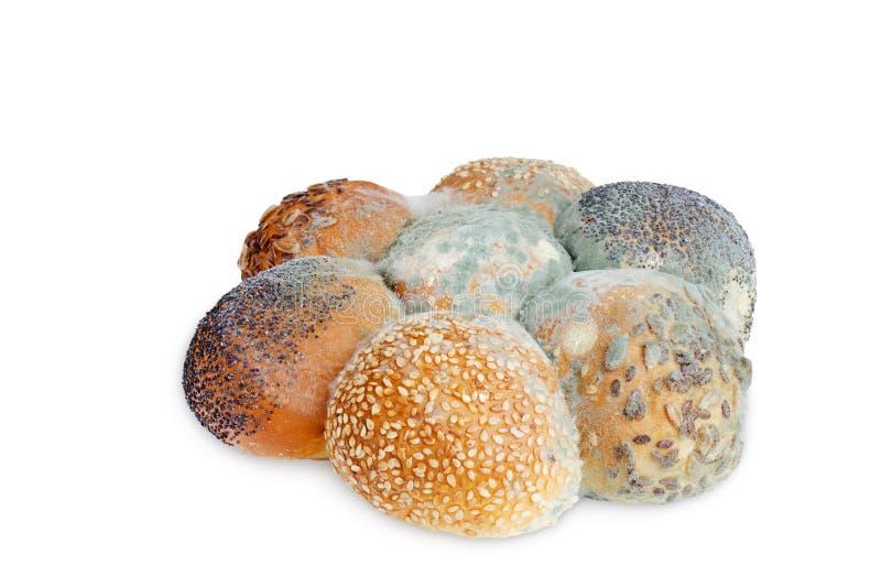 Uma foto do molde que cresce o pão velho com as sementes isoladas no fundo branco A contaminação de alimentos, mau estragou trigo imagem de stock