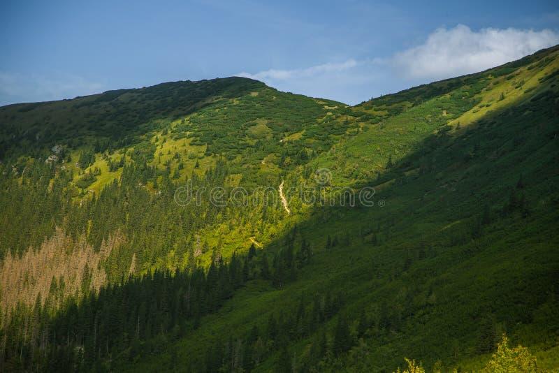 Uma fuga de caminhada bonita nas montanhas Paisagem da montanha em Tatry, Eslováquia fotografia de stock royalty free