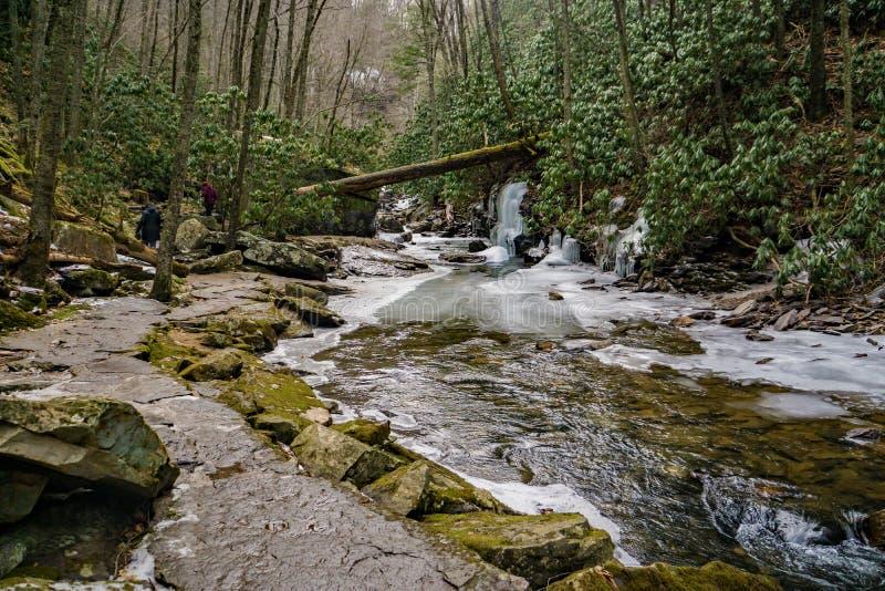 Uma fuga de caminhada por pouco Stony Creek fotografia de stock