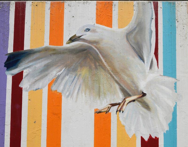 Uma gaivota fotografia de stock