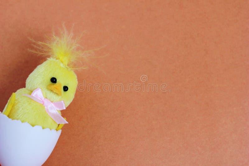 Uma galinha amarela do brinquedo chocou de um ovo branco do brinquedo Easter feliz S?mbolo da vida nova Espa?o para o texto imagem de stock