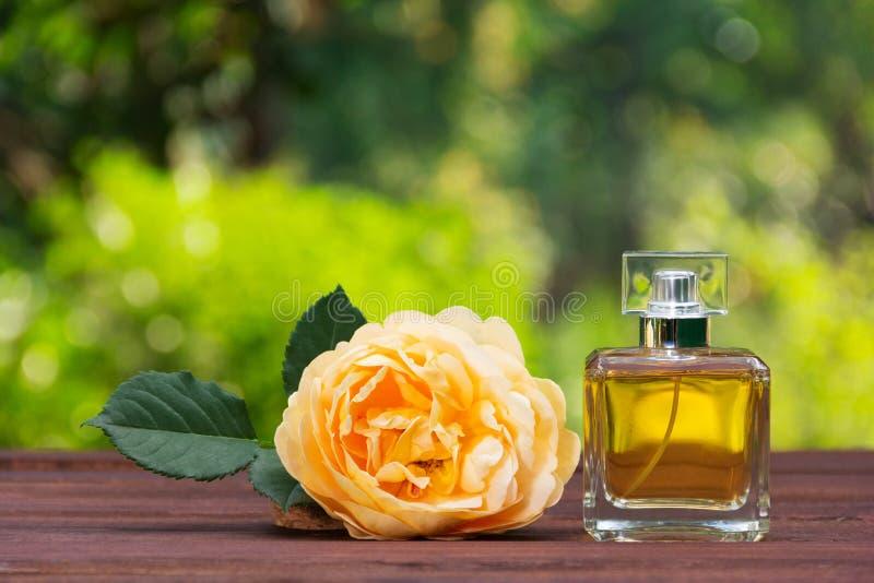 Uma garrafa de perfume e uma rosa perfumada do amarelo O perfume natural em uma garrafa quadrada em um verde borrou o fundo foto de stock