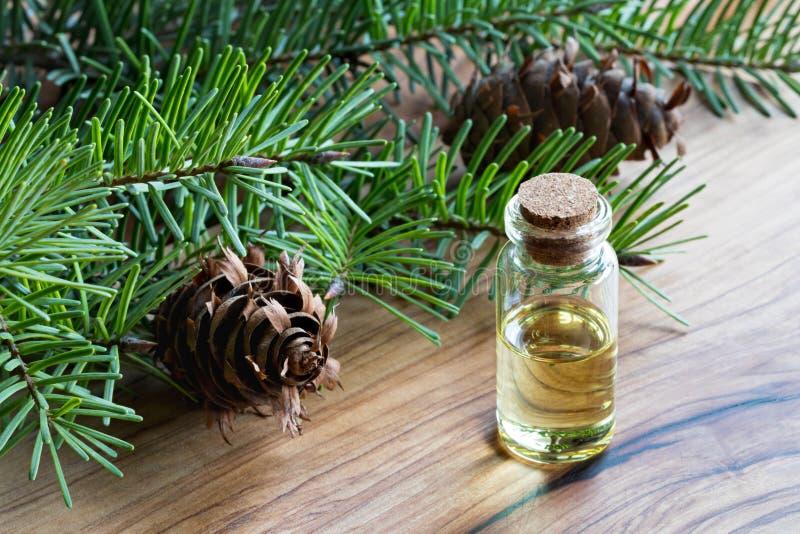 Uma garrafa do óleo essencial de abeto de Douglas com abeto de Douglas ramifica imagem de stock royalty free