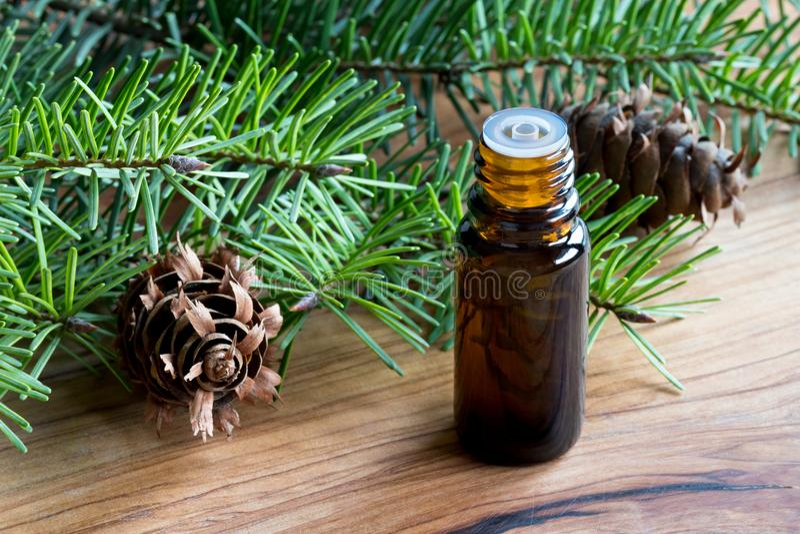 Uma garrafa escura do óleo essencial de abeto de Douglas com farelo do abeto de Douglas fotos de stock royalty free