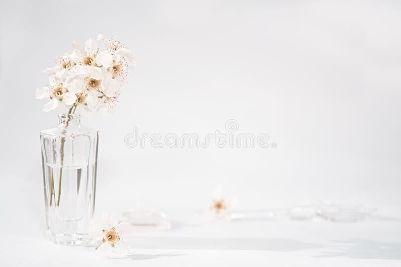 Uma garrafa transparente do perfume e um ramo com as flores brancas ao lado de que se encontram uma haste de vidro e um tampão fotos de stock