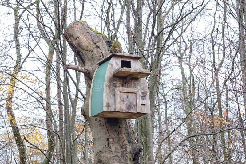 Uma grande caixa de pássaro pregada a uma árvore inoperante no outono fotos de stock royalty free