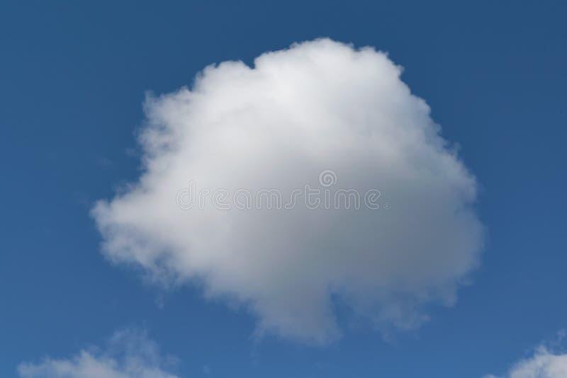 Uma grande nuvem irregulaa branca na forma de uma bola em um céu azul claro foto de stock royalty free