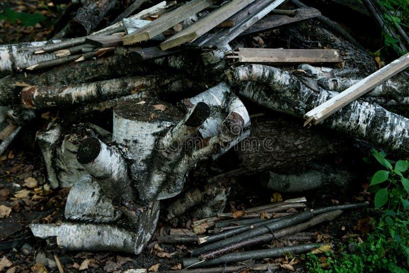 Uma grande pilha de galhos, caídos e pranchas imagem de stock